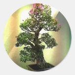 Bougainvillea Bonsai Tree Round Sticker