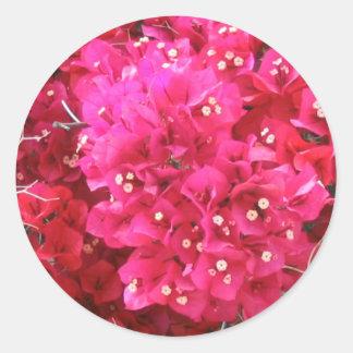 Bougainvillea Flower Sticker