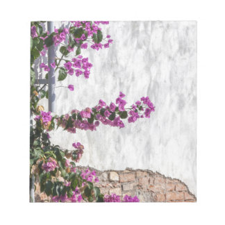 bougainvillea on wall as texture notepads