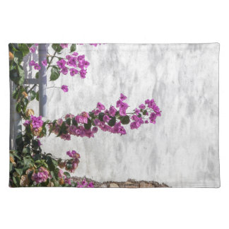 bougainvillea on wall as texture placemat