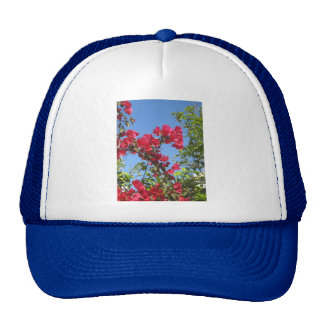 Bougainvillea Products Mesh Hat