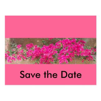 Bougainvillea Save the Date Postcard