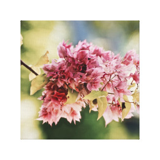 Bouganvillea - Tropical - Canvas Art - Caribbean