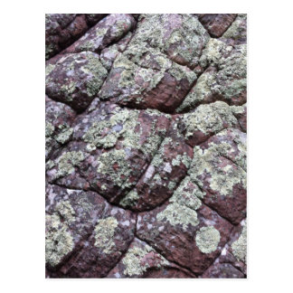 Bouldered Rocks with Lichen Moss Postcard