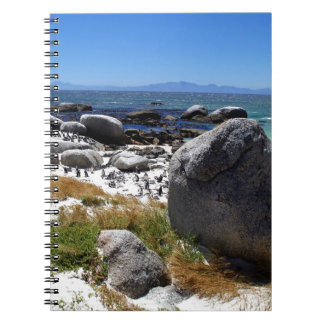 Boulders Beach Notebook