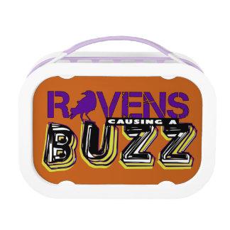 Bounceback Buzz! Lunch Boxes