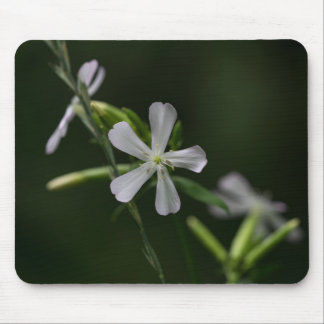 Bouncing Bet Soapwort White Wildflowers Mousepad