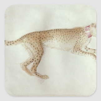 Bounding cheetah with a red collar square sticker