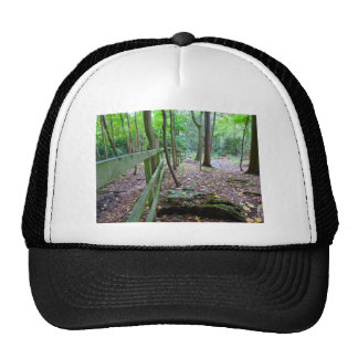 Boundry to the woods cap