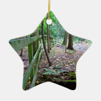Boundry to the woods ceramic star decoration