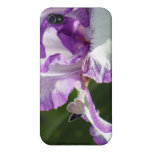 Bountiful Butterfly Iris Photography iPhone 4/4S Case