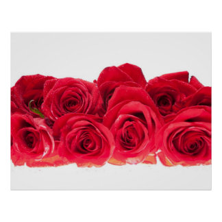 Bouquet of Bright Pink Roses Poster