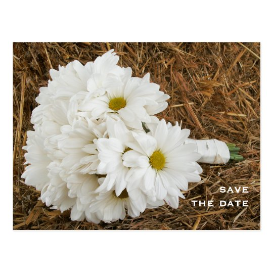 Bouquet of Daisies on a Bale of Hay Save The Date Postcard