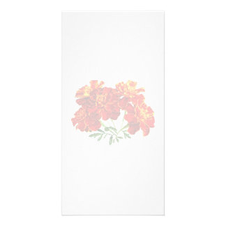 Bouquet of Marigolds Photo Card Template