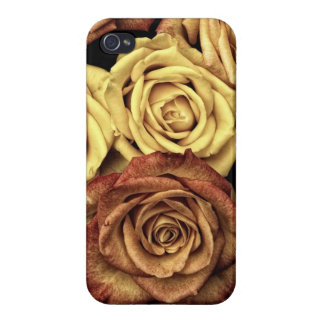 Bouquet of Roses in Full Bloom iPhone 4 Case
