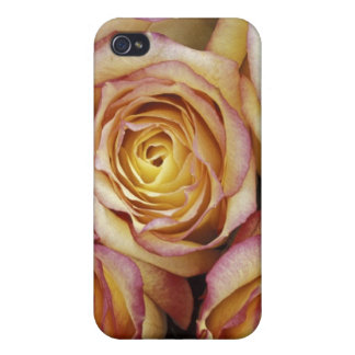 Bouquet of roses iPhone 4 case