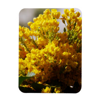 Bouquet of Yellow Flowers in Bloom Vinyl Magnets