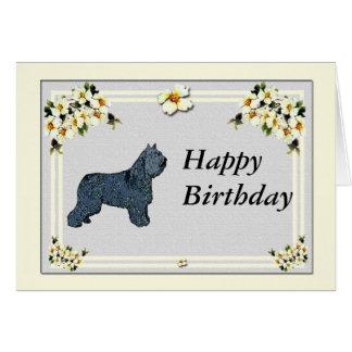 Bouvier des Flandres - Birthday Card
