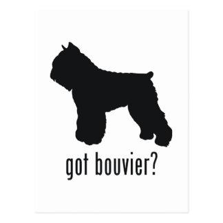 Bouvier Postcard