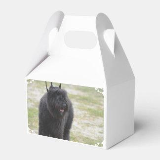 Bouviers des Flanders Favour Box