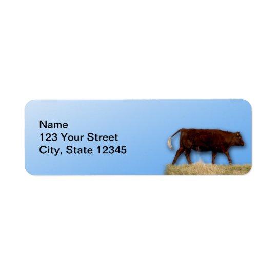 Bovine and Blue Sky: Cow on Blue Return Address