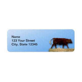 Bovine and Blue Sky: Cow on Blue Return Address Return Address Label
