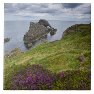 Bow Fiddle Rock, Portknockie, Scotland Tile