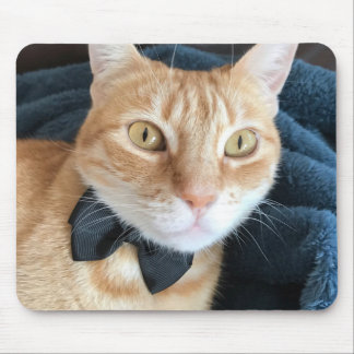 Bow tie cat mouse mat