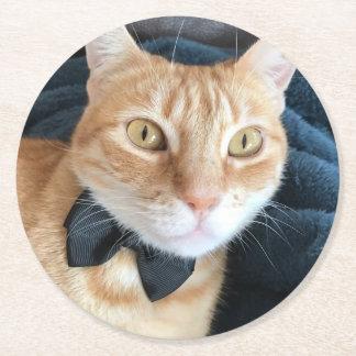 Bow tie cat round paper coaster