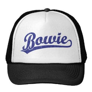 Bowie script logo in blue hats