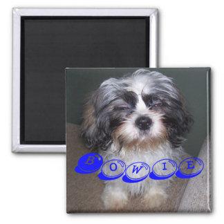 Bowie the Fuzzy Shih Tzu Puppy Dog Magnet