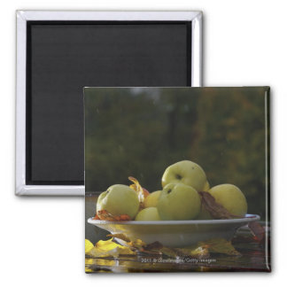 Bowl of apples and leaves magnet