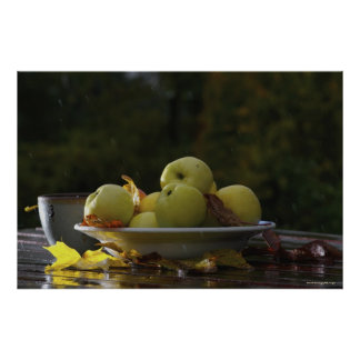 Bowl of apples and leaves poster