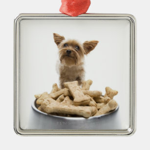 Bowl of dog treats by Yorkshire Terrier Christmas Ornament