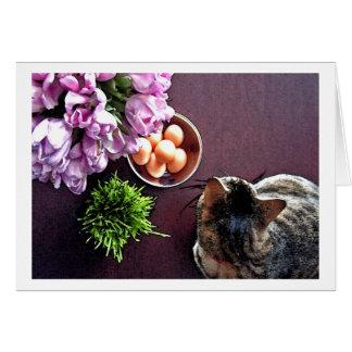 Bowl of eggs. Snapshot 1 Card