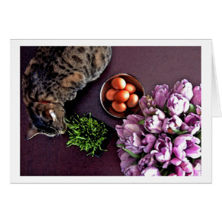Bowl of eggs. Snapshot 5 Card