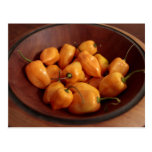 Bowl of habanero peppers, Traditional food Post Card