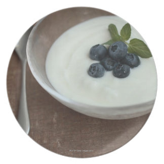 Bowl of yoghurt with blueberry on table plate