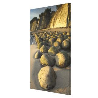 Bowling Ball Beach on California's Mendocino Coast Canvas Print