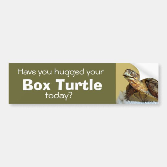Box Turtle Bumper Sticker! Bumper Sticker
