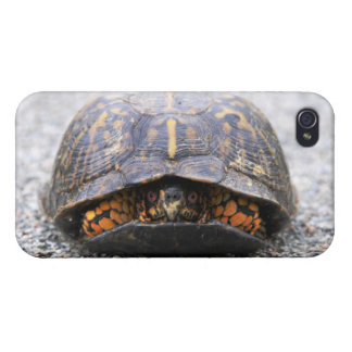 Box Turtle Case For iPhone 4