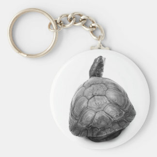 Box Turtle in Black and White Basic Round Button Key Ring