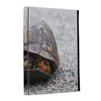 Box Turtle iPad Folio Covers