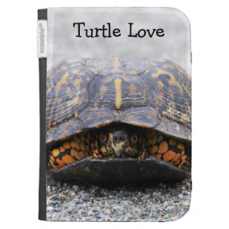 Box Turtle Kindle 3 Cover