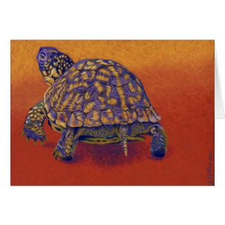 Box Turtle, tortoise Card