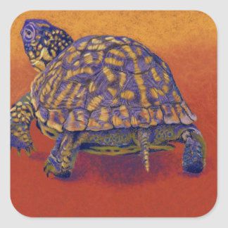 Box Turtle, tortoise Square Sticker