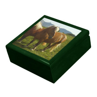 Box with remembering green Horse Large Square Gift Box
