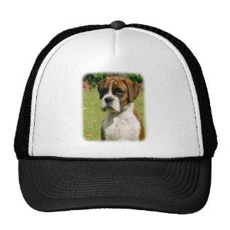 Boxer 9Y049D-033_2 Hat