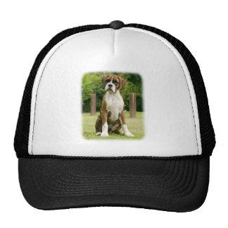 Boxer 9Y049D-046 Trucker Hats