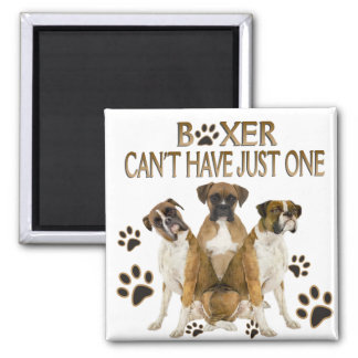 Boxer Can't Have Just One Gifts Square Magnet
